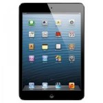 ipad mini 4g black 600