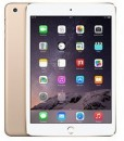 iPad Mini LTE 64gb